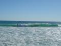 サーフィンをする人