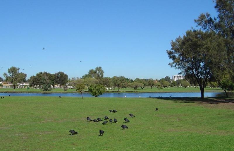 サウスパース(公園)